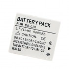 Sanyo DB-L20 battery